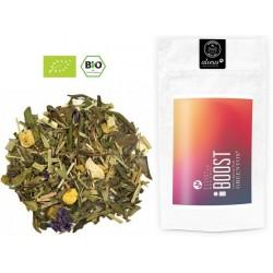 ALVEUS herbata BIO – ORGANIC Boost GreenTox Detoks twoja moca sklep cena