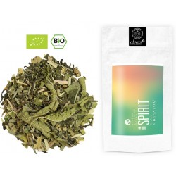 ALVEUS herbata Spirit GreenTox ORGANIC BIO zdrowy duch sklep cena