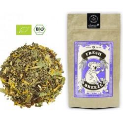 ALVEUS herbata ORGANIC BIO Herbal Fresh Breeze Poranna Bryza sklep cena